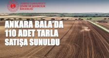 ANKARA BALA'DA 110 ADET TARLA SATIŞA ÇIKARILDI